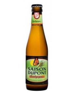 24 Birra Saison Dupont Biologique