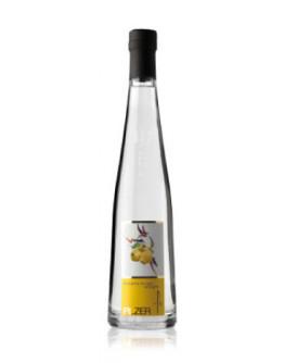 6 Acquavite Di Mele Cotogne  -Pilzer Vitigno