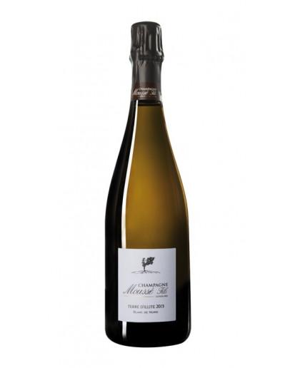 Champagne Mousse Fils Terre d'Illite - Blanc de Noirs Extra Brut