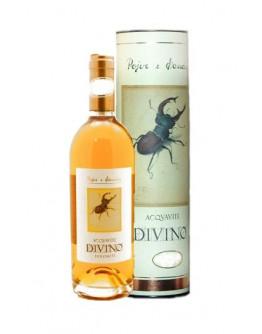 Acquavite Divino Brandy 10 yo
