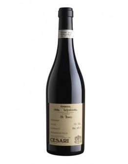 6 Amarone della Valpolicella docg 2011 - Il Bosco