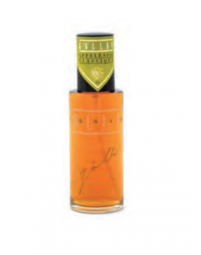 Steirische Apfelessig Spray