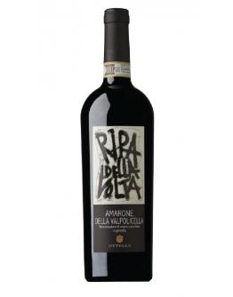 Amarone Classico della Valpolicella docg 2013 - Ripa della Volta